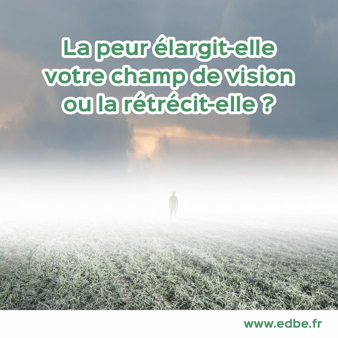 La peur élargit-elle votre champ de vision ou, au contraire, la rétrécit-elle ?